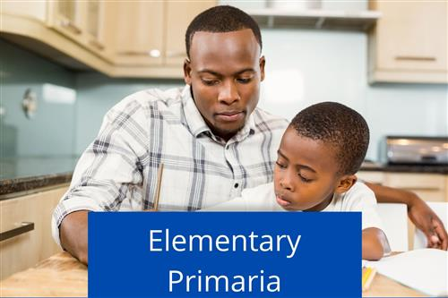 Elementary Distance Learning