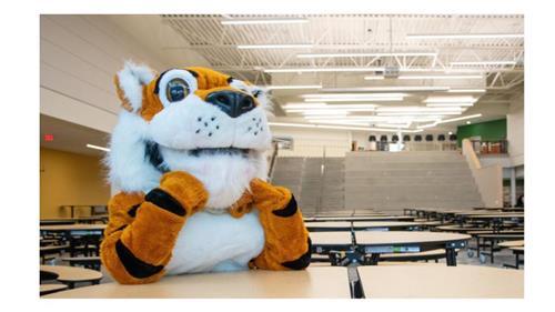 Tiger Mascot at the commons